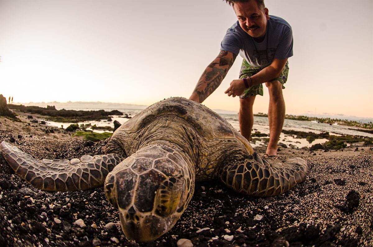 Hawaiian Tortoise Selfie