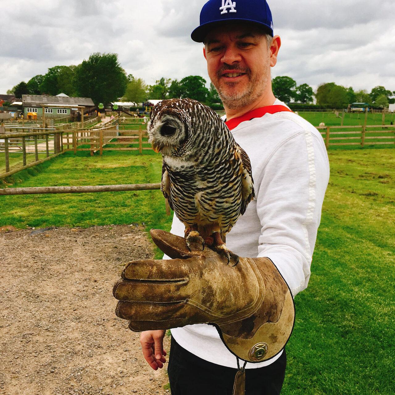 UK owl wiseman