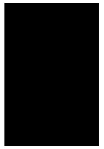 lostlab black logo